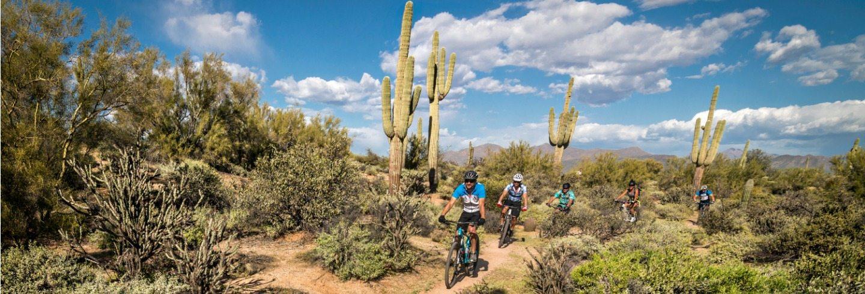 AOA Half-Day Mountain Biking Tours