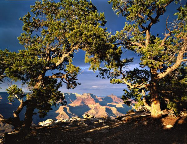 Hike the Grand Canyon on a guided tour with AOA