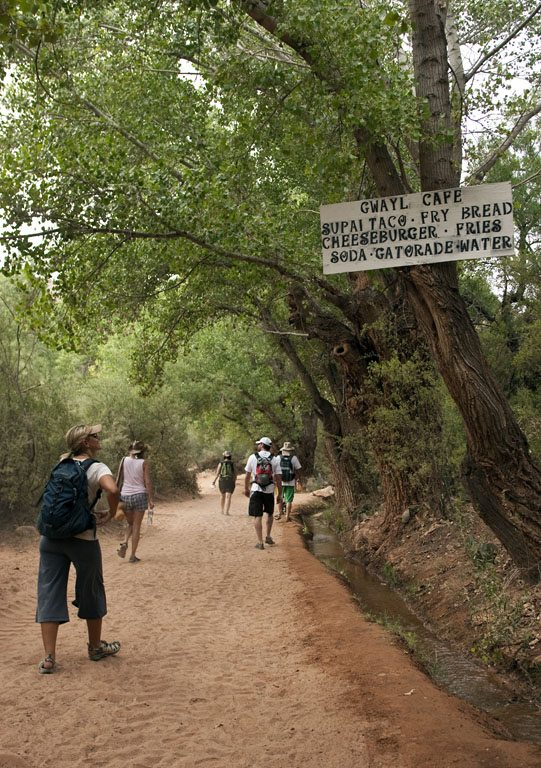 Hike to Havasupai Waterfalls | Guided Trip | All-inclusive ...