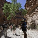 Hike Havasupai with AOA Adventures