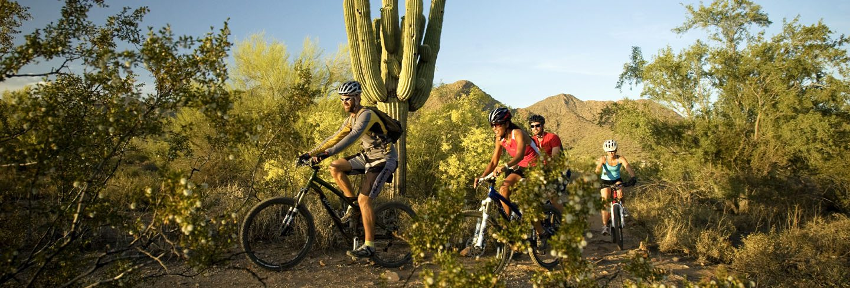 Scottsdale Road Biking - AOA Adventures