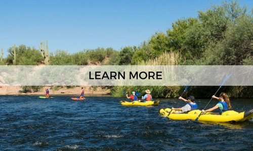 Learn more about our guided half day kayaking tours