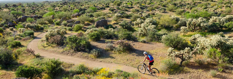 Desert Mountain Bike Singletrack