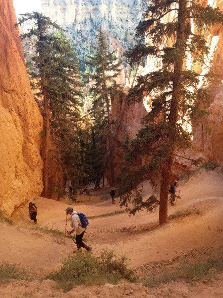 061513 REI Bryce Canyon NP-1009