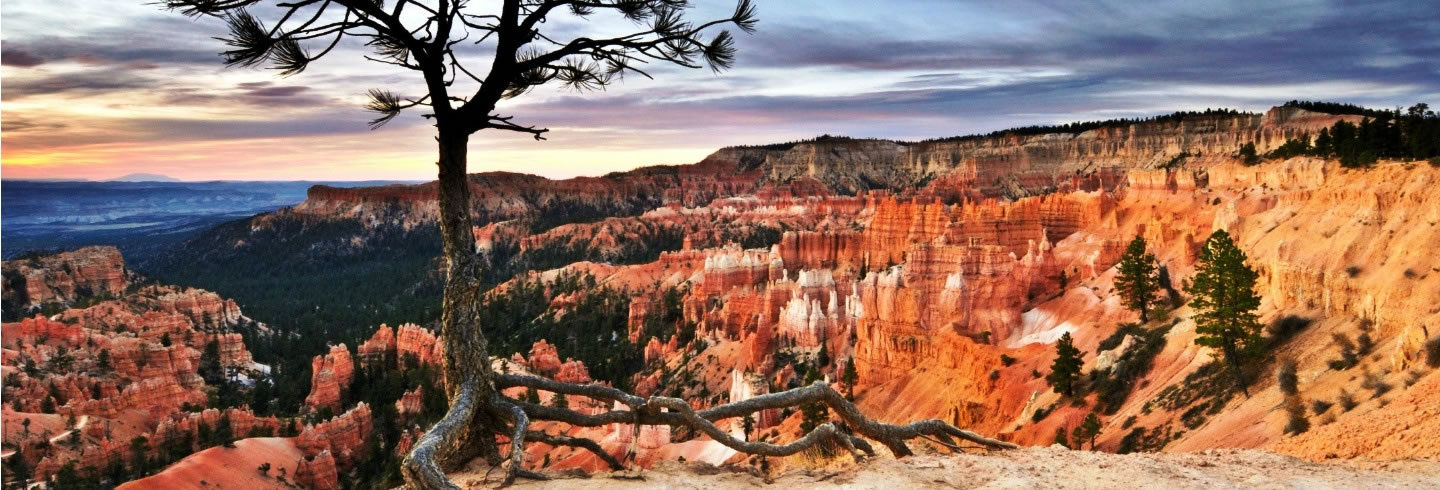 Guided hiking and biking Bryce National Park