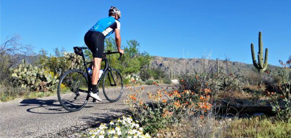 Road Cycling in Southern Arizona with AOA