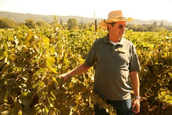 Road biking tour stops at wineries in Napa Wine Country