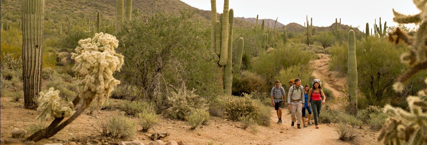 Go on a guided backpacking trip in the Superstion Wilderness near Phoenix, AZ