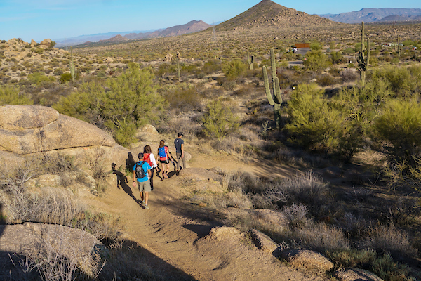 A group hiking through giant cactus and boulders