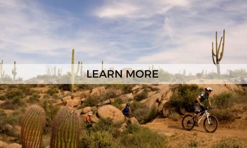 Learn more about a 3-day guided mountain bike tour in the Sonoran Desert with AOA