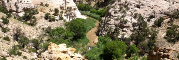 Hike along the Escalante River in Southern Utah