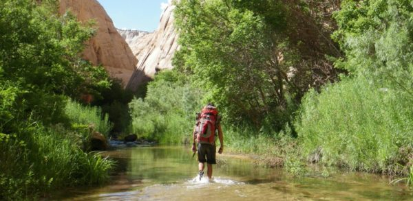 Hiking through the Escalante River