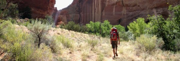 See natural bridges, archs, waterfalls, and ancient ruins on a hike along the Escalante River