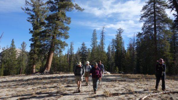 Hike Half Dome in Yosemite