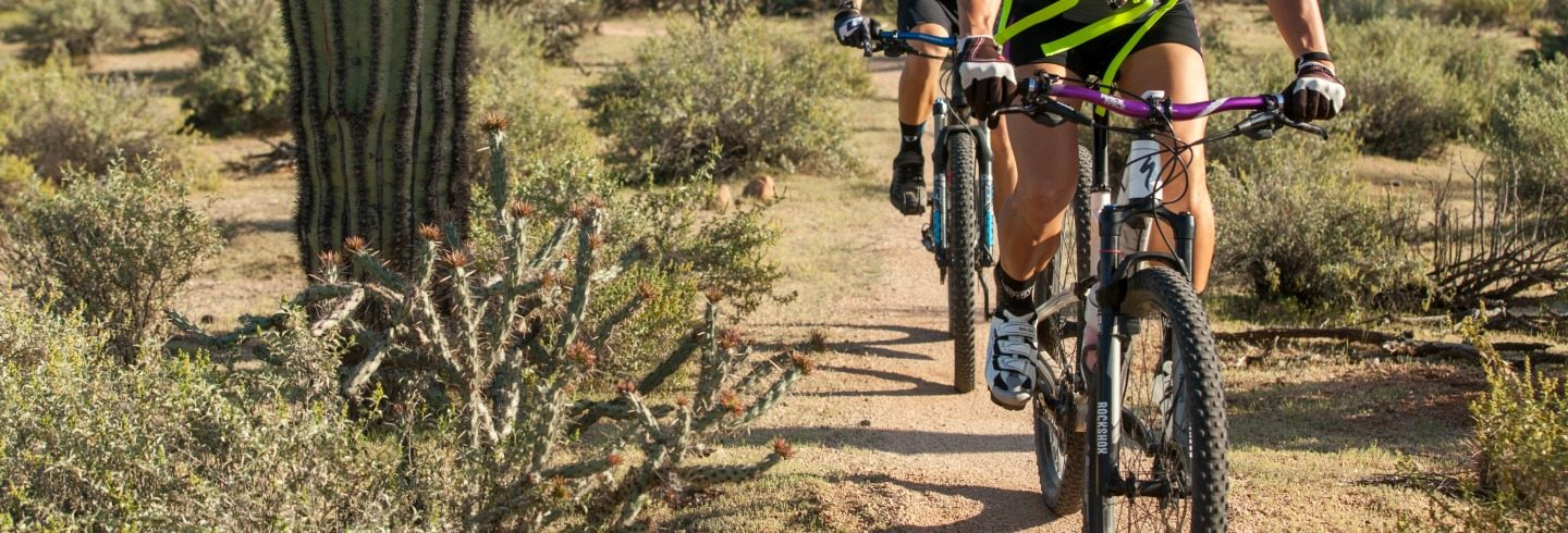 AOA Bike Delivery Service to trail heads in Scottsdale, AZ
