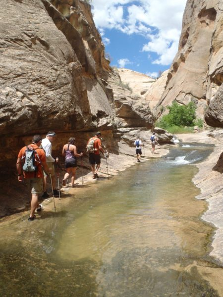 Exploring Death Hollow off of Escalante River on a guided backpacking trip with AOA
