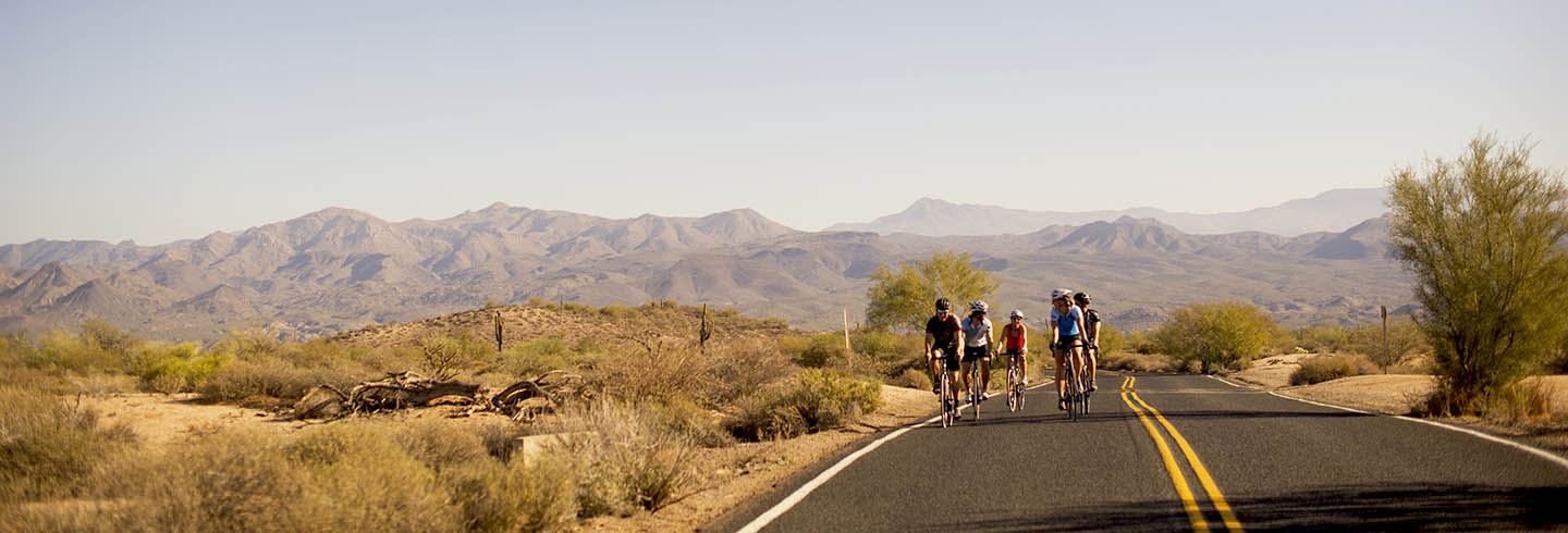 Cycle through the Sonoran Desert on a Guided Tour with AOA Adventures