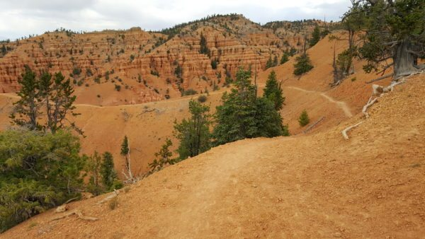 mountain biking the Thunder Mountain Trail in Southern Utah