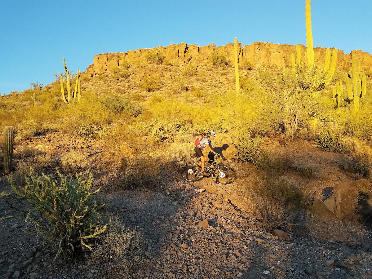 Mountain biker on Black Canyon Trail.