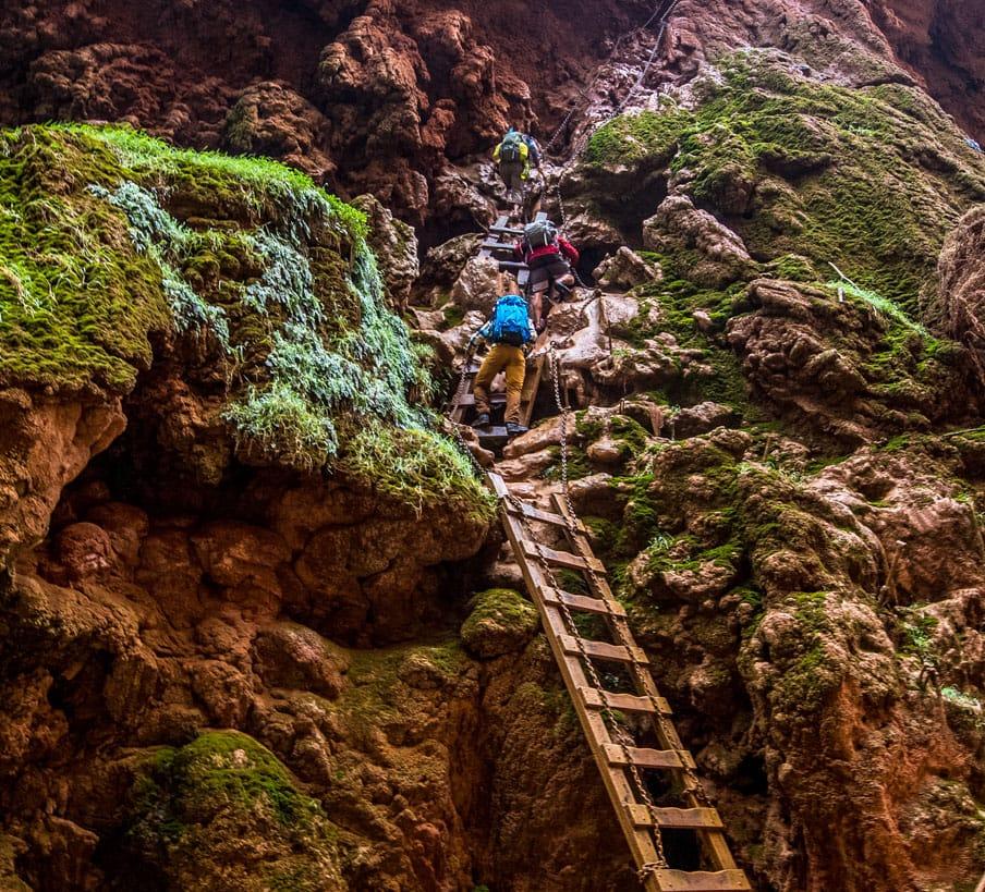 Hikers climb cliffside ladders on Havasu Falls trip