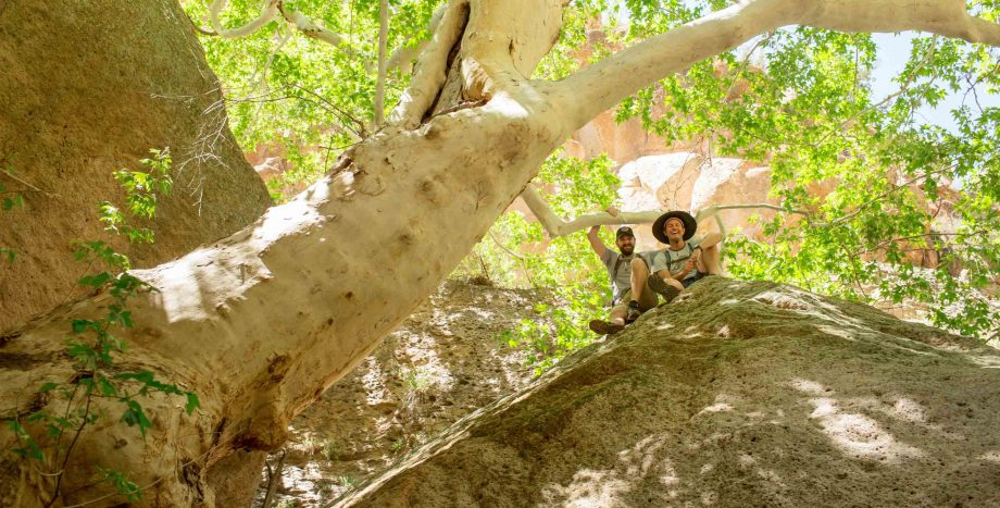 Hikers smile from top of rock on Aravaipa trip