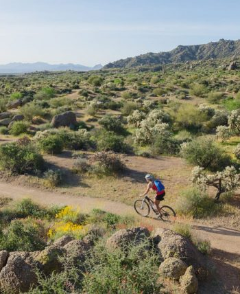 Mountain biker rides through McDowell Sonoran Preserve on tour