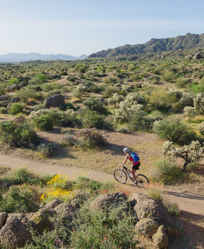 Mountain biker rides through McDowell Sonoran Preserve on tour