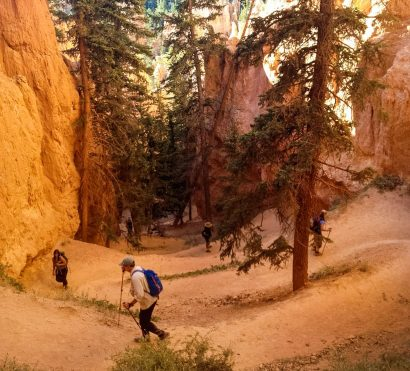 Hiking tour group climbs winding Bryce Canyon trail
