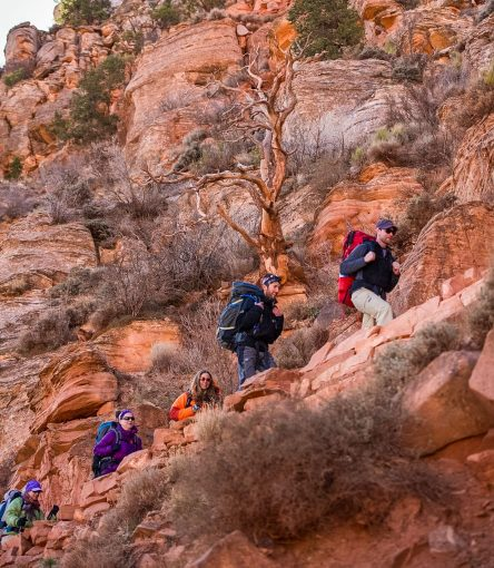 Hiking group climbs trail on Colorado River backpacking trip