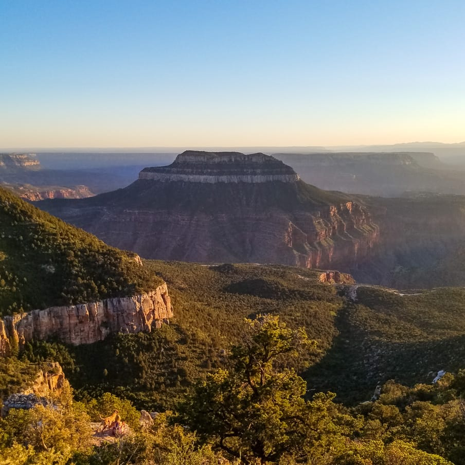 Overlook view of Grand Canyon National Park at sunset