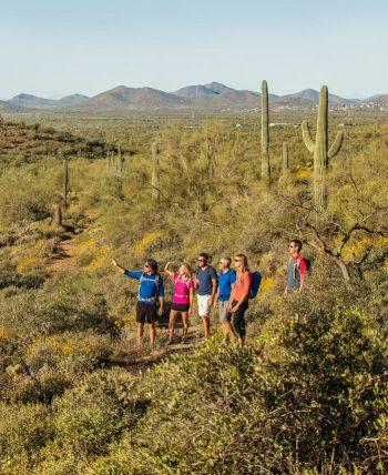 Hiking group appreciates desert view near cacti