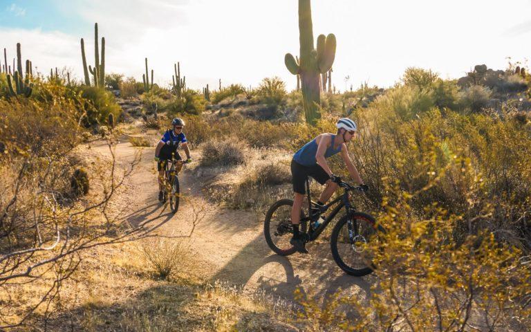 Scottsdale mountain bike tour rides between desert cacti