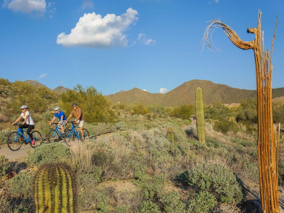 Scottsdale bike tour group rides past desert cacti