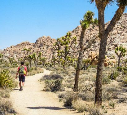 Hiker on Joshua Tree National Park trip desert trail
