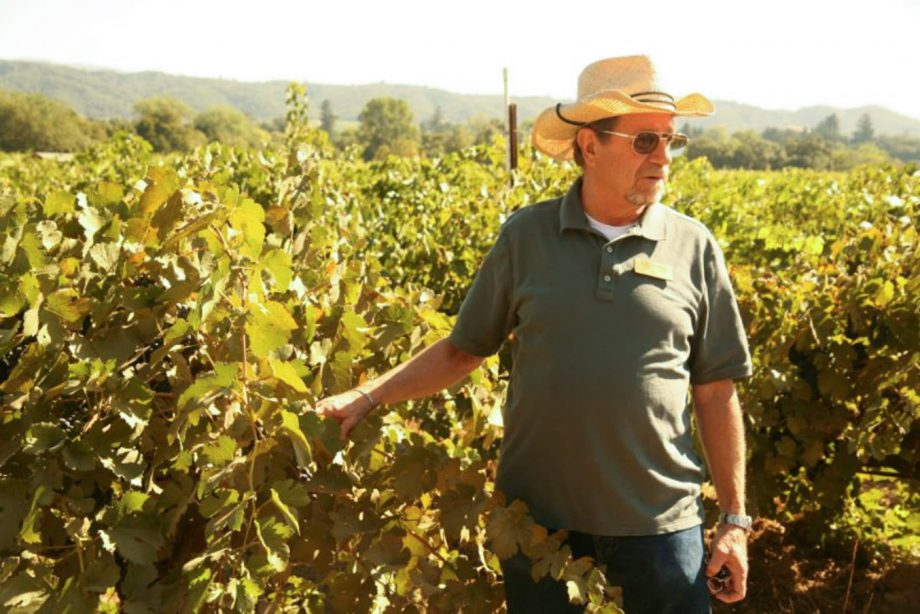 Man stands in vineyard in Napa, California