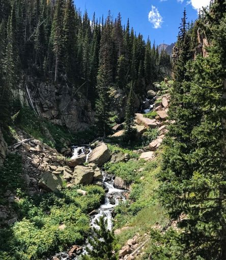 Forest stream in Rocky Mountain National Park