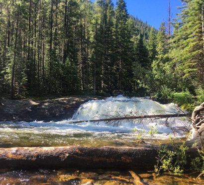 Forest river waterfall in Rocky Mountain National Park
