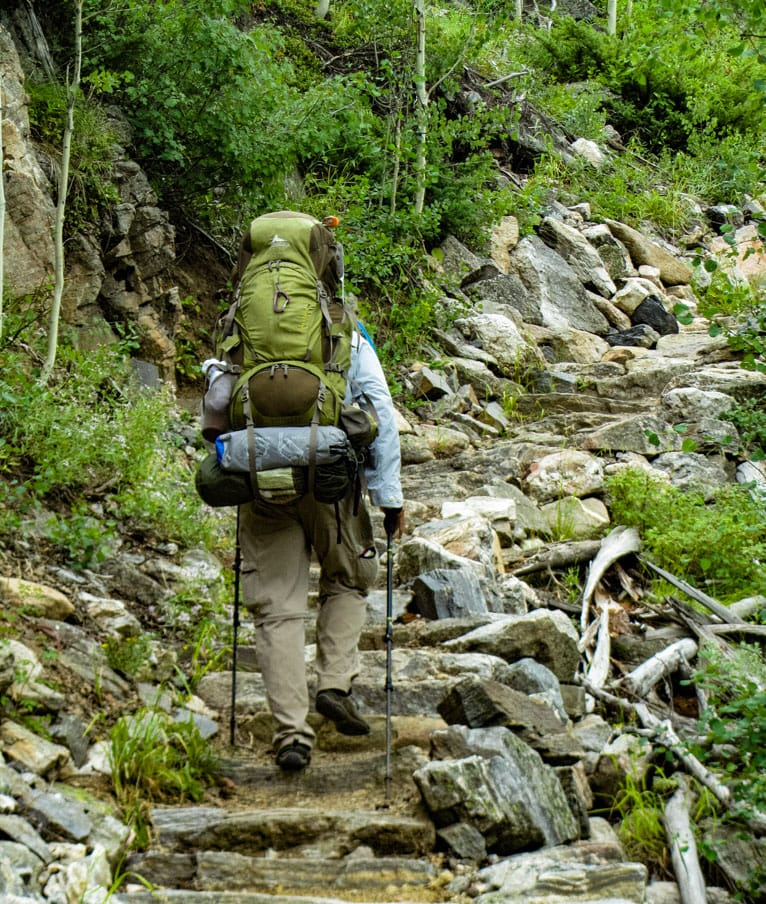 Back view of hiker climbing steps on Rocky Mountain trail