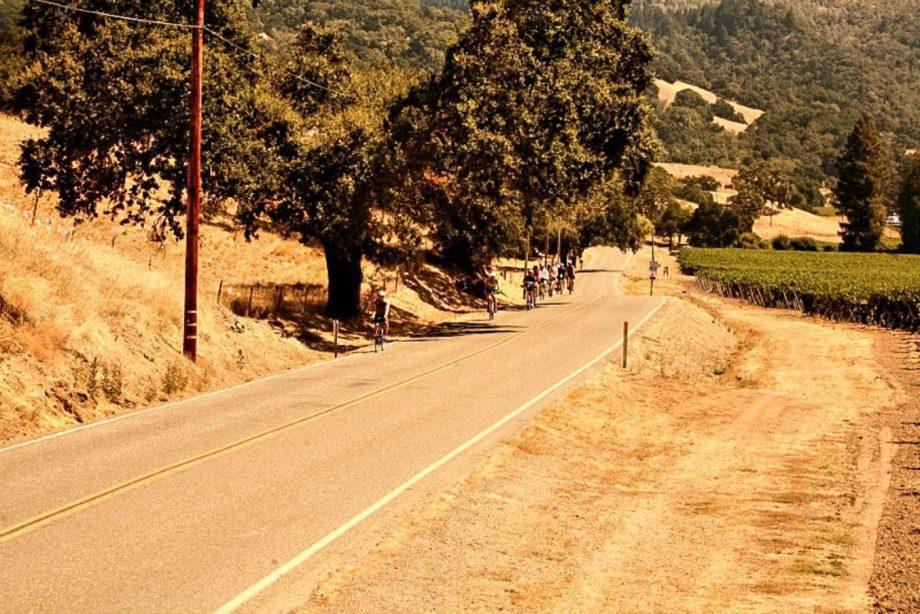 Bike tour group on Sonoma road cycling tour