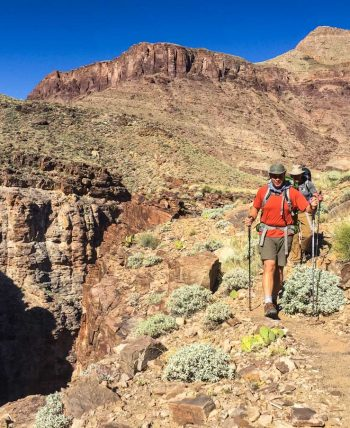 Hikers descend trail on Grand Canyon backpacking trip.