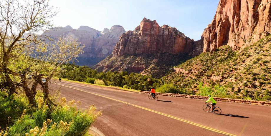 Cyclists pass trees and cliffs on southern Utah road bike tour