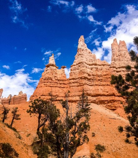 Natural rock spire formations in Utah national park