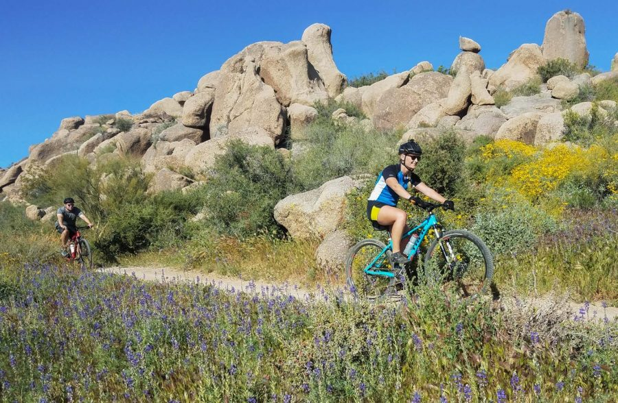 Mountain bikers pass yellow and purple flowers on tour.