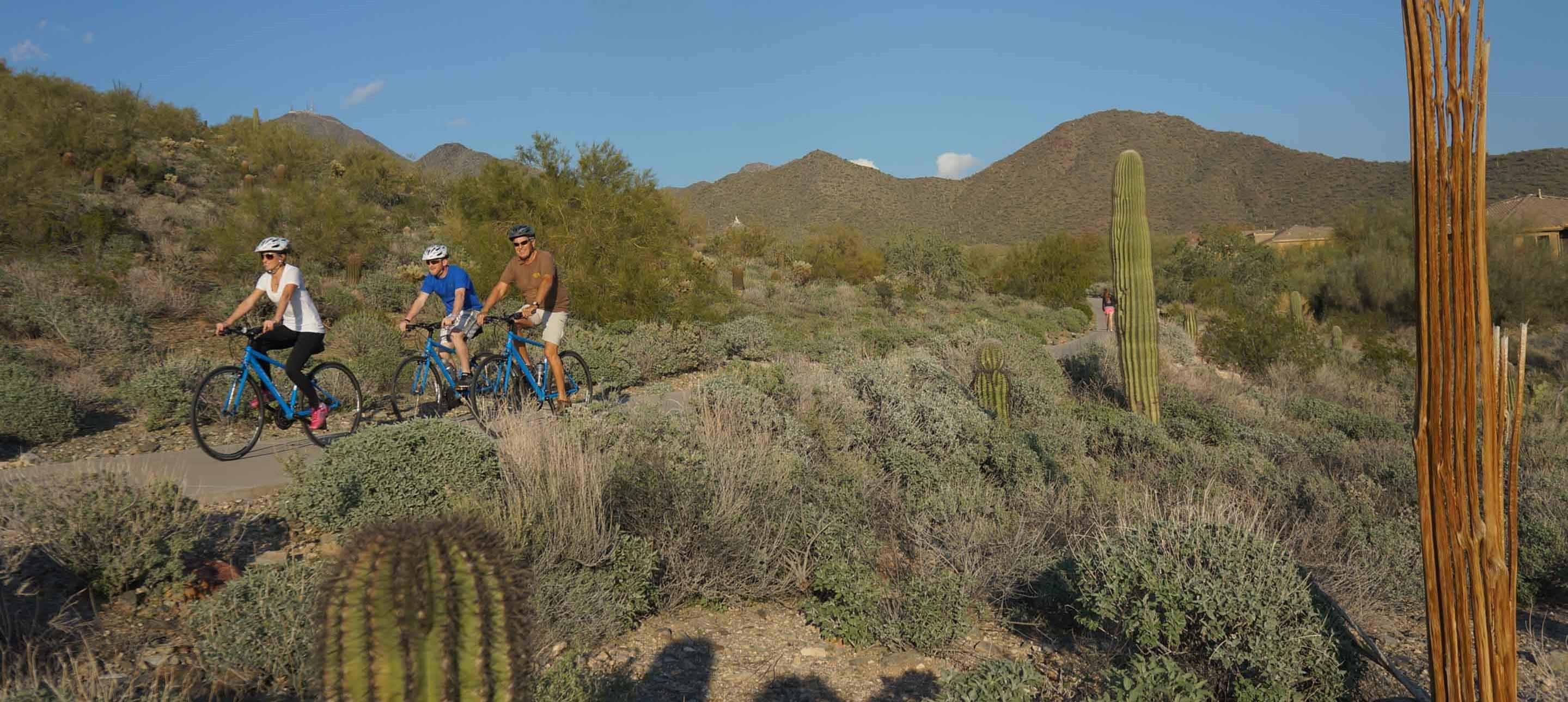 Three bikers on a trail