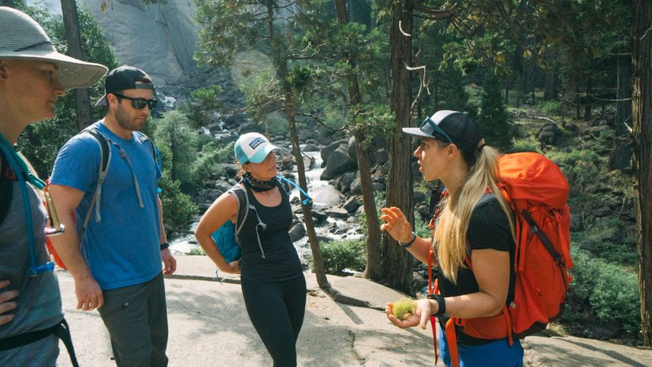 Hiking guide explains plant to tour group