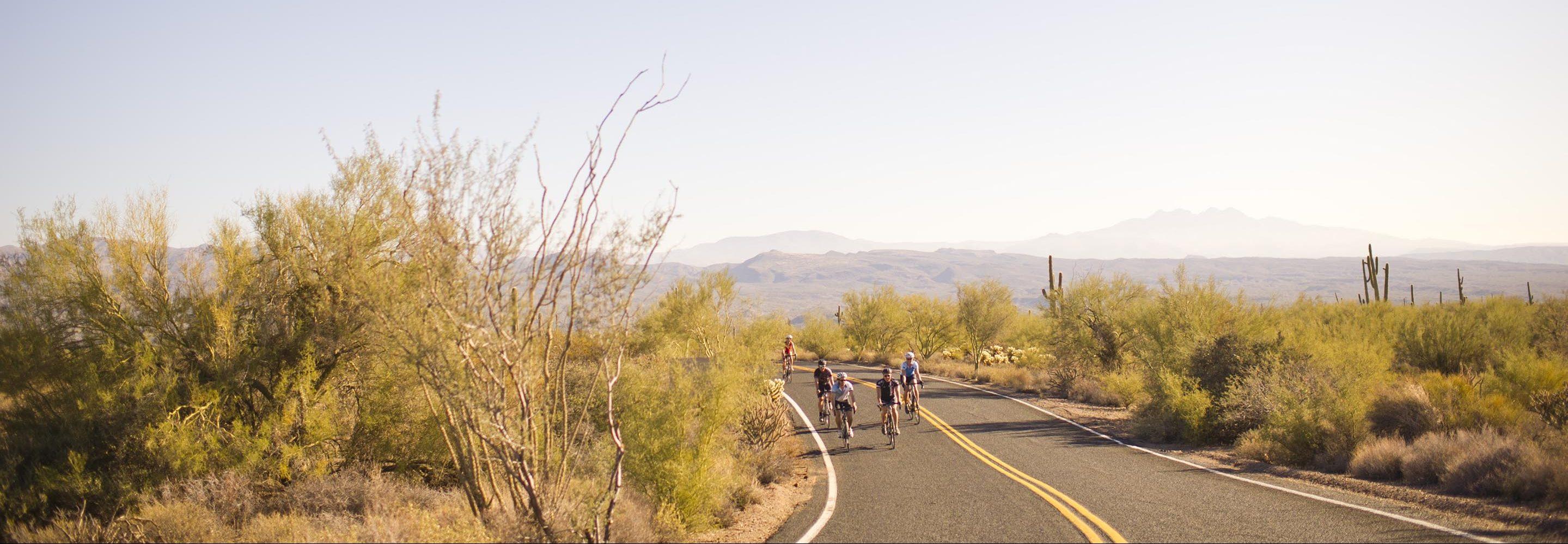 Cyclist on Sonoran Desert Road