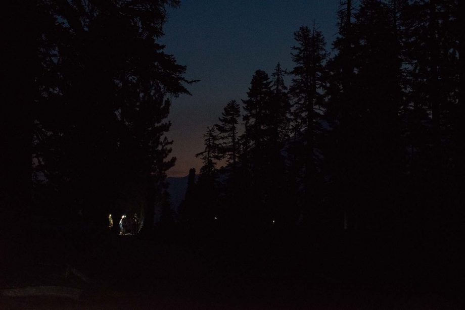 View of night sky at Yosemite National Park