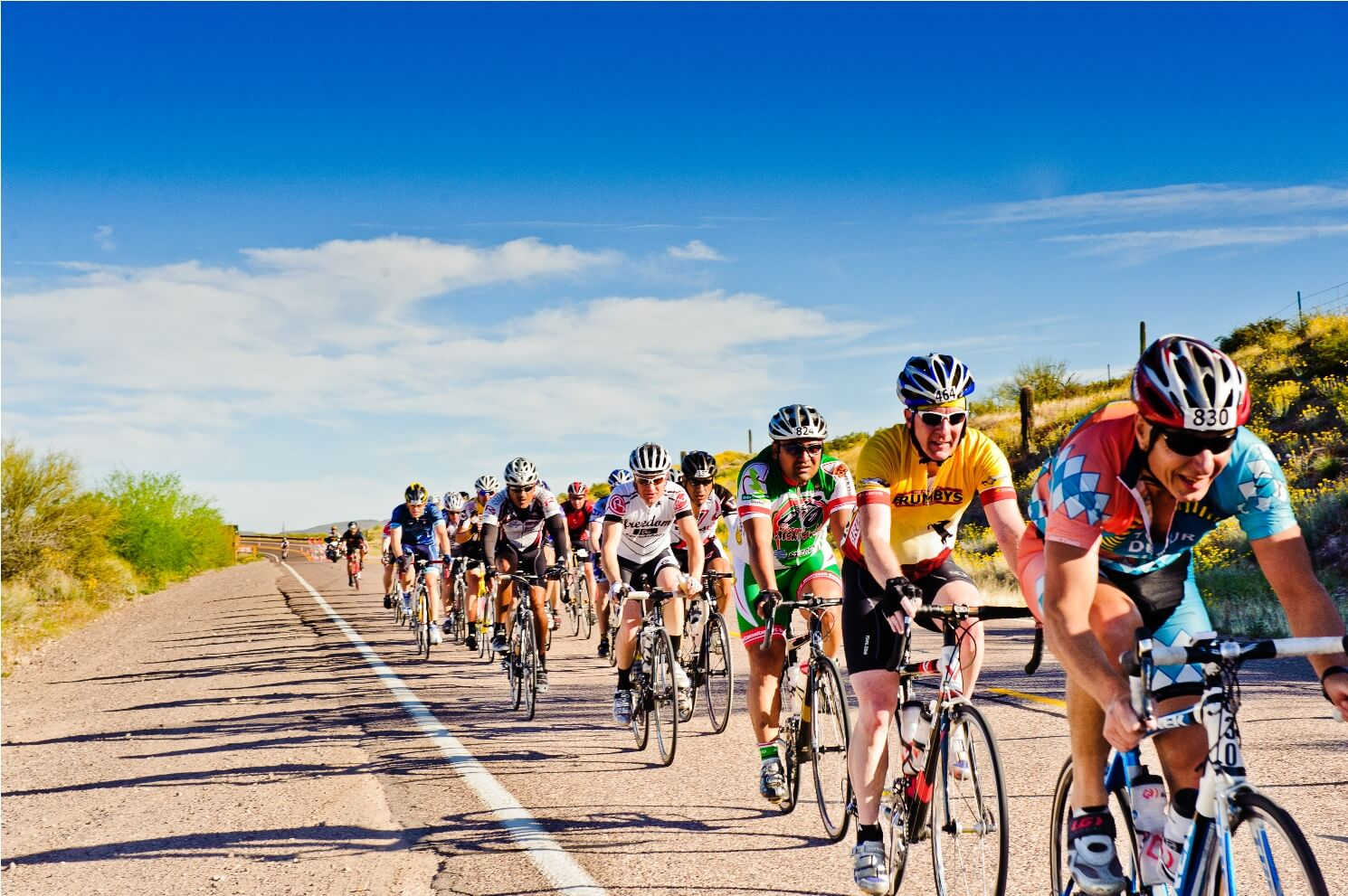 tour de mesa road cycling