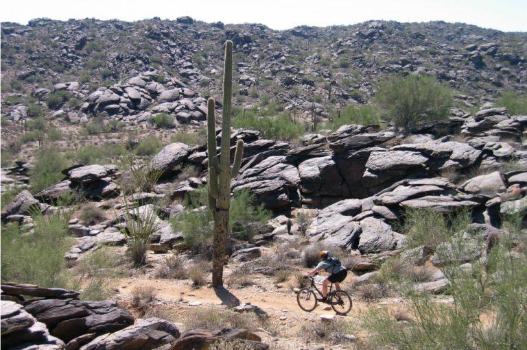 mountain biking in south mountain phoenix