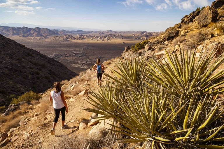 Two female hikers walking down Ryan Mountain Trail with the view over the desert in the background.